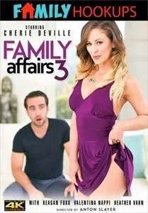 Family Affairs Vol. 3 (Family Hookups)