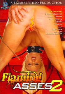 Flaming Asses Vol. 2 (Bizarre Video)